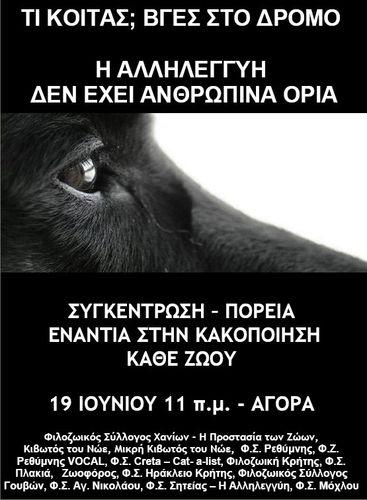 Animaux_Crète